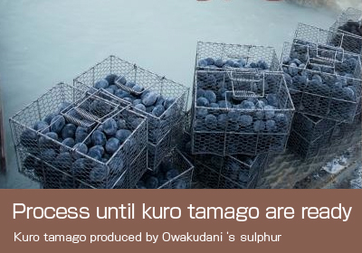 Process until kuro tamago are ready