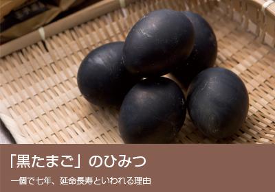 「黒たまご」のひみつ