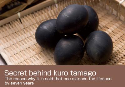 Secret behind kuro tamago